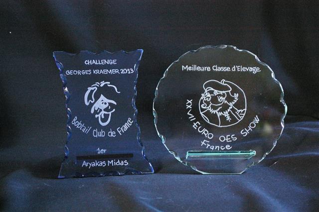 Gravure de trophées en verre d'après le logo du club
